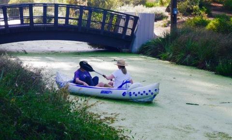 kayak whap (1)